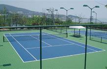 亞強體育施工案例: (gui)pu網球場施工YQ-004,