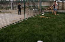 亞強體育施工案例:球場圍網YQ-0014,